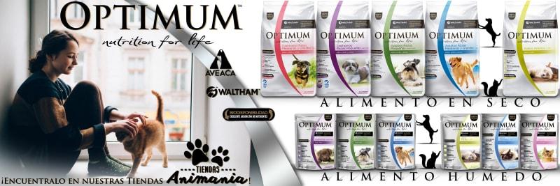 Optimum Premium