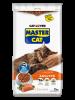 MASTER CAT SALMON 3 KILOS