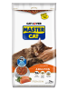MASTER CAT SALMON 20 KILOS