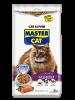 MASTER CAT HOGAREÑOS SALMON 1 KILO