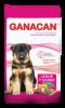 GANACAN CACHORRO 22KG