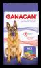 GANACAN ADULTO MIX 22KG