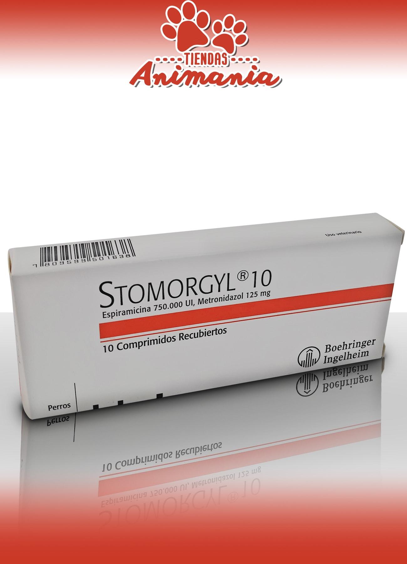 giardia stomorgil