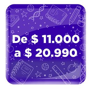PRODUCTOS DE 11 000 A 20 990
