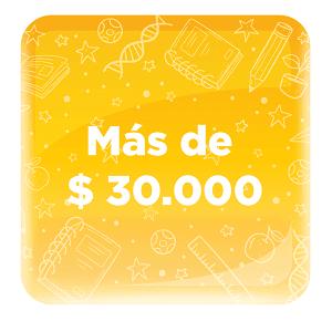 PRODUCTOS DE MAS DE 30 000