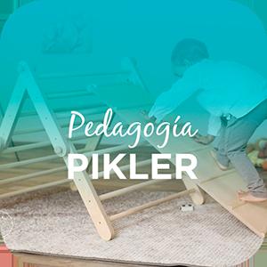 PEDAGOGIA PIKLER