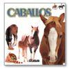 """Caricias """"Caballos"""""""