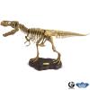 Dr. Steve Paleo Expeditions T-Rex Full Skeleton model Kit