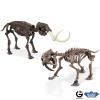 Dr. Steve Paleo Adventures Excav. Kit Smilodon vs Mammuthus