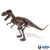 Dr. Steve - Dino excav. Kit Tyrannosaurus Skeleton