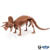 Dr. Steve - Dino excav. Kit Triceratops Skeleton