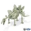 Dr. Steve - Dino excav. Kit Stegosaurus Skeleton