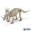 Dr. Steve - Dino excav. Kit Styracosaurus Skeleton