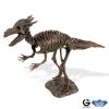 Dr. Steve - Dino excav. Kit Stygimoloch Skeleton