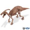 Dr. Steve - Dino excav. Kit Parasaurolophus Skeleton