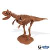 Dr. Steve - Dino excav. Kit Carnotaurus Skeleton
