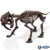 Dr. Steve Ice Age excav. Kit Smilodon Skeleton