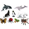 9 Animales del Mar e Insectos en Contenedor
