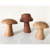 Set 3 hongos, línea madera nativa