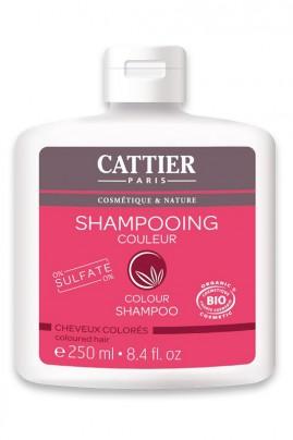 Shampoo  Cuidado de Color