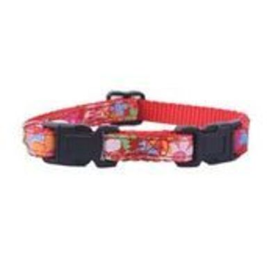 Mascan Collar Gato Doble Seguridad