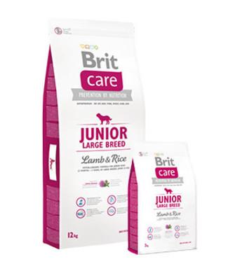 Brit Care Junior Large Breed Lamb & Rice Perro