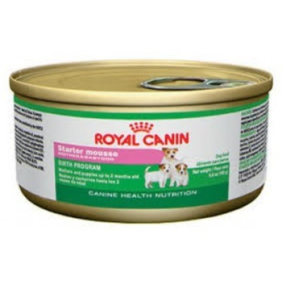 Royal Canin Lata Starter Mousse