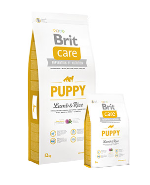 Brit Care Puppy Lamb & Rice Perro