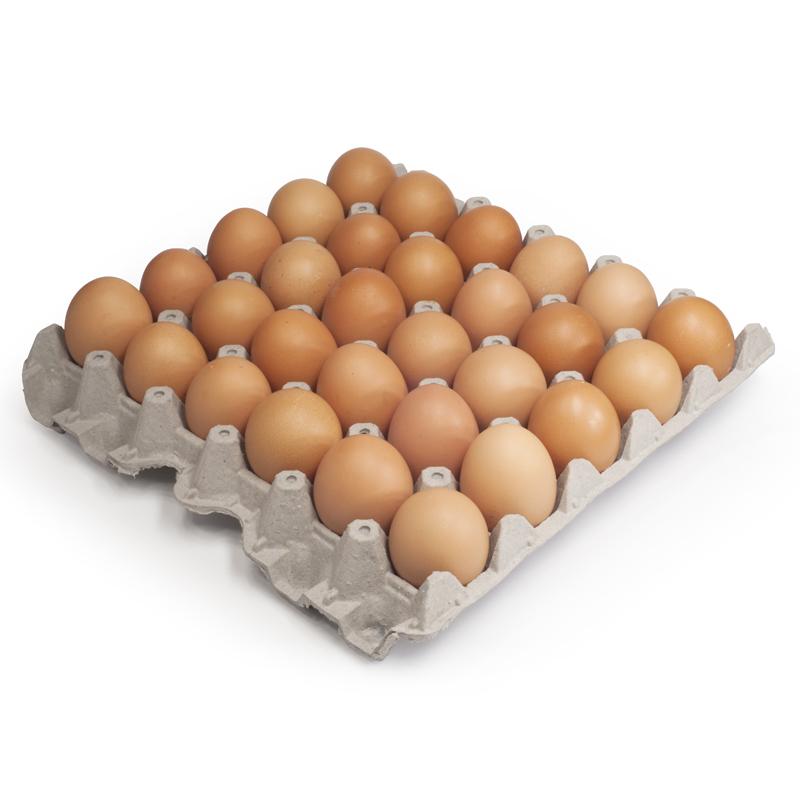 Huevos tinajacura bandeja 30 unid tinajacura for Bandejas para huevos