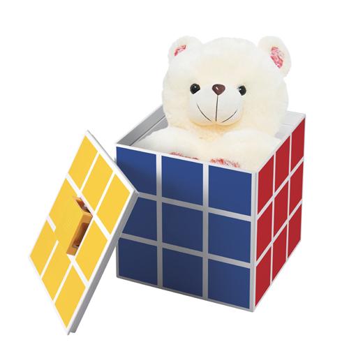 ORGANIZADOR BOX RUBIK