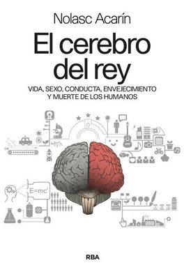 EL CEREBRO DEL REY1