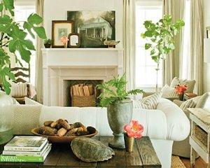Las plantas dan vida a los espacios
