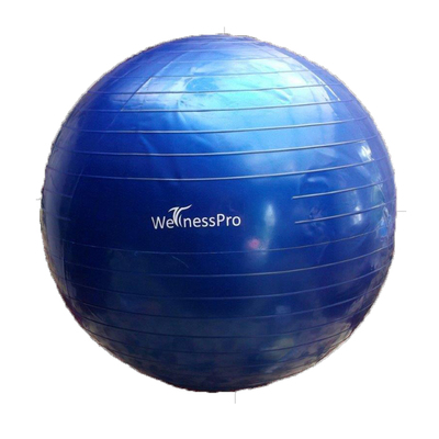 YOGA BALL WELLNESS PRO C/BOMB 65 CMS.