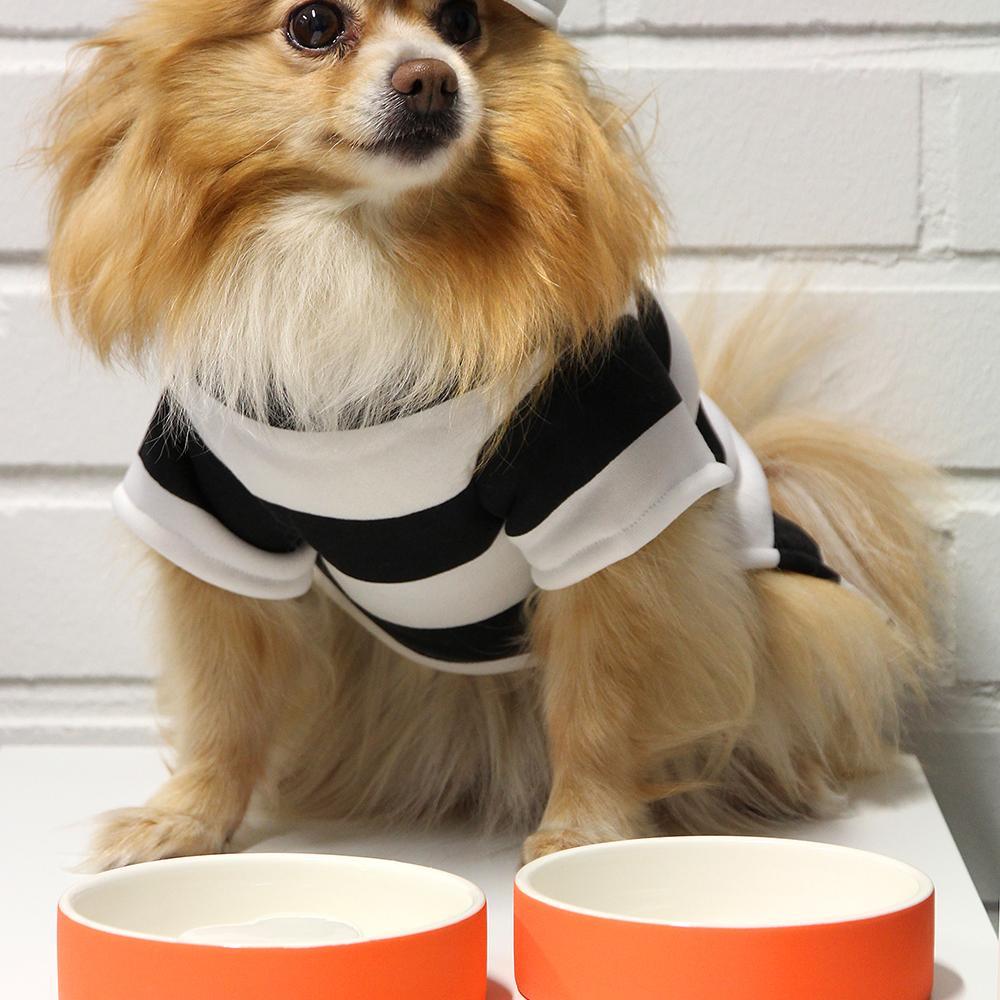 Plato de agua para mascota - pequeño.