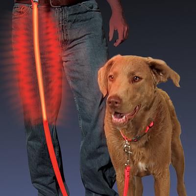Correa Entrenamiento de Perro Mascota LED Nite Dawg Nite Ize