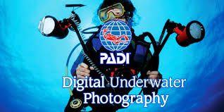 DIGITAL UNDERWATER PHOTOGRAPHER1
