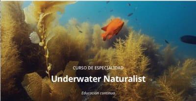 UNDERWATER NATURALIST COURSE1