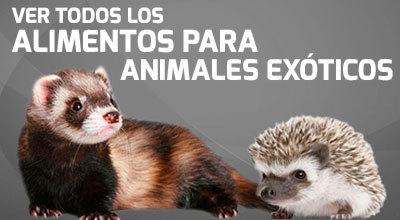 Alimentos para animales exóticos