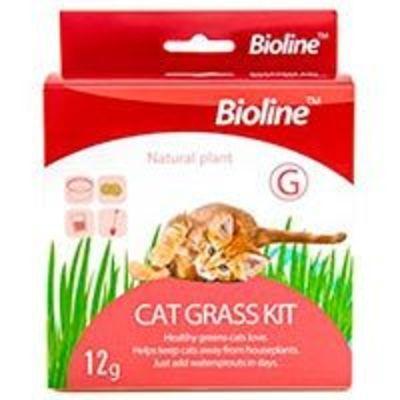 Bioline - Kit de siembra hierba gatera