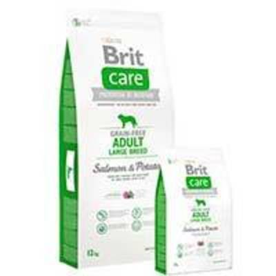 Brit Care Adult Large Breed Salmón