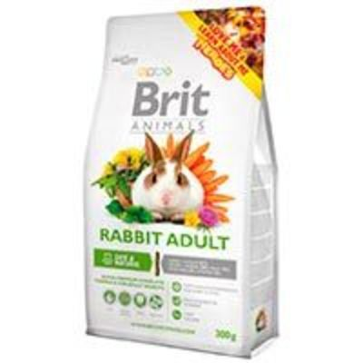 Brit Conejo - Rabbit Adult