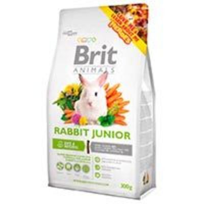 Brit Conejo - Rabbit Junior