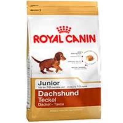 Royal Canin Dachshund Teckel Junior