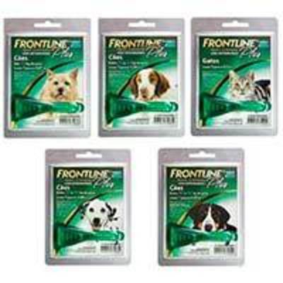 Frontline Plus Pipetas