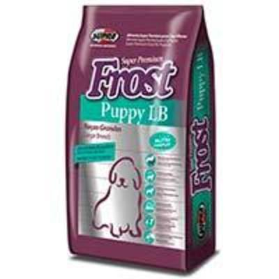 Frost Dog Puppy LB