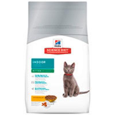 Hills Cat Kitten Indoor