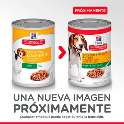 Hills Dog Puppy - Pollo y Cebada