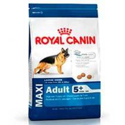 Royal Canin Maxi 5+