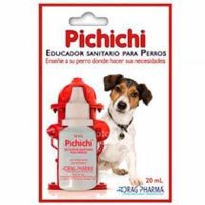 Pichichi – Educador Sanitario para Perros