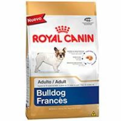 Royal Canin Bulldog Frances Adulto